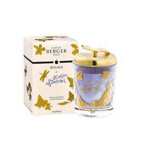 Berger Maison Lolita Paris Bougie Lempicka Parfume Parme DHW9Y2eIEb